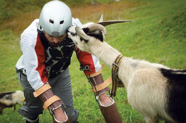 Goat.jpg1